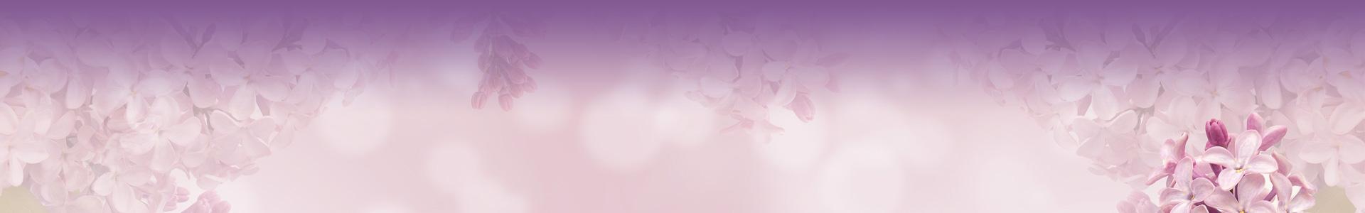 Brautkleid TW0073B - schlicht Satin Spitze Perlen Neckholder Schleppe Schnürung
